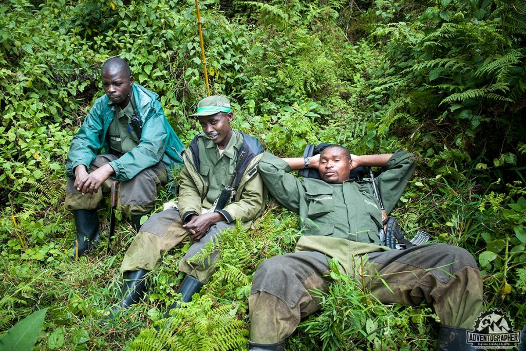 silverback gorilla trekking trackers waiting for our group