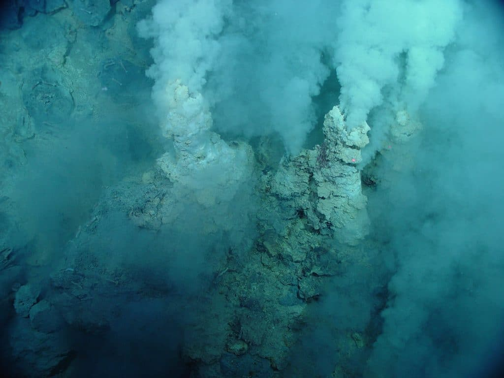 Hydrothermal vents you'll see diving in iceland
