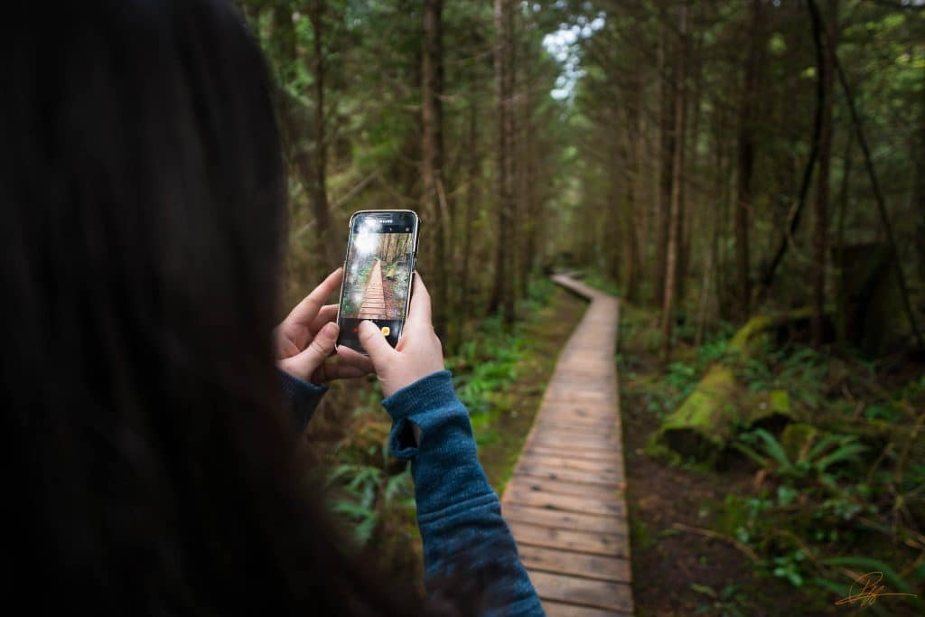 Things to do in Tofino BC rainforest trail