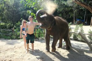 tourists playing with an elephant in Phuket